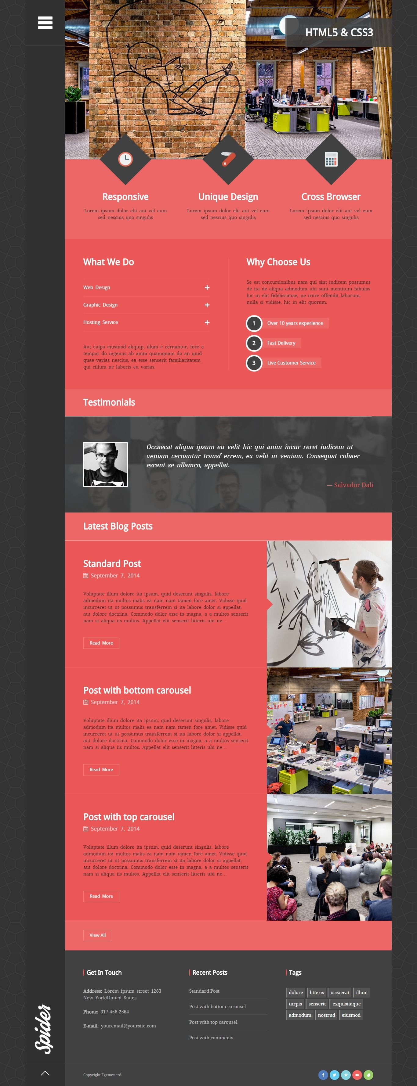 Spider - Wordpress Theme